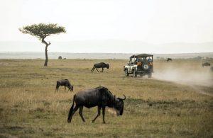 Kenija e-viza